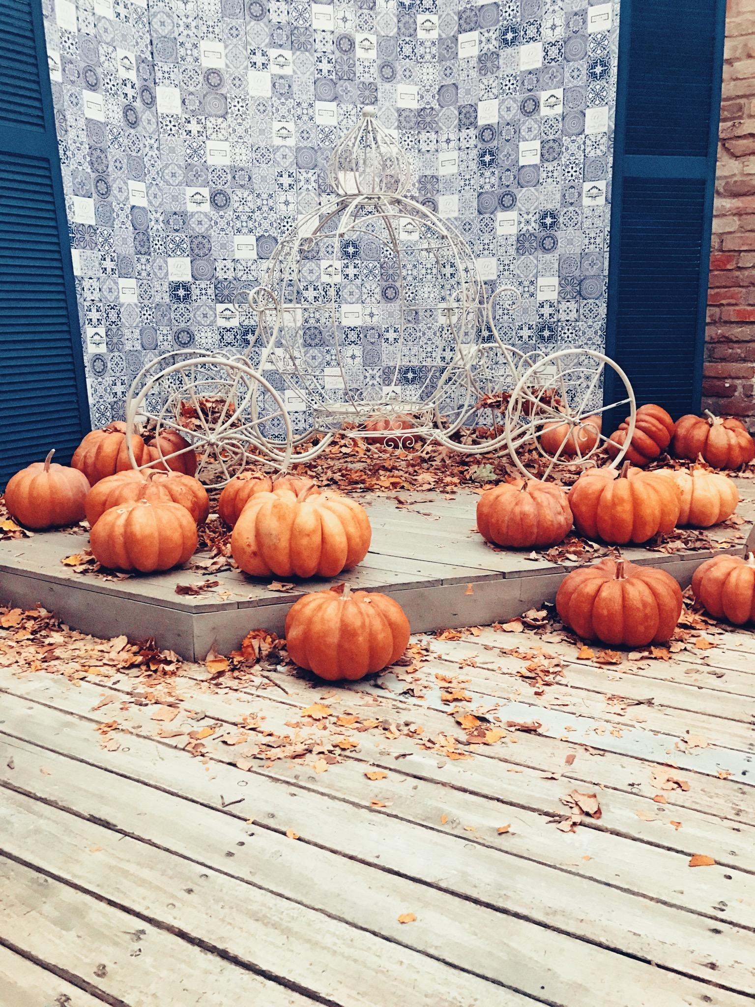 Halloween Vinyl Photo Backdrops (backdrop roll)
